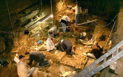 Centre archéologique de la grotte Scladina – Eté archéologique à Scladina