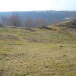 Chantier de gestion à la réserve naturelle de Sclaigneaux