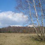 Visite guidée de la réserve naturelle de Sclaigneaux