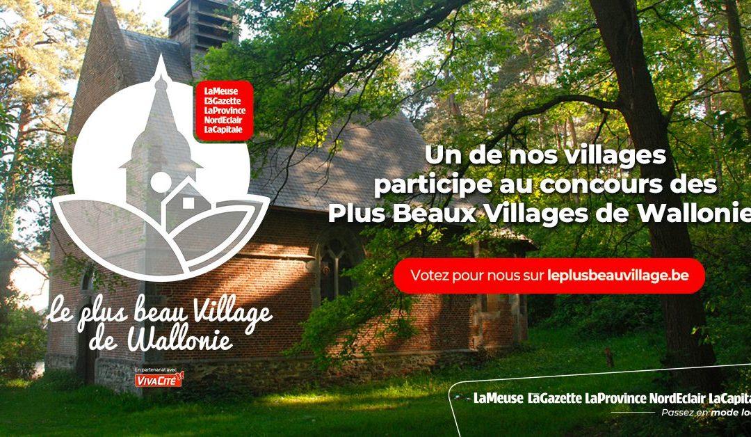 Thon-Samson Plus Beau Village de la Province de Namur : MERCI !